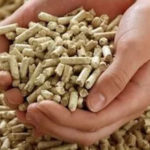 prezzi pellet italia
